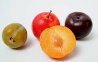 Frutas ricas en hierro alimentos vegetales con m s cantidad hierro 2018 - Alimentos ricos en calcio y hierro ...
